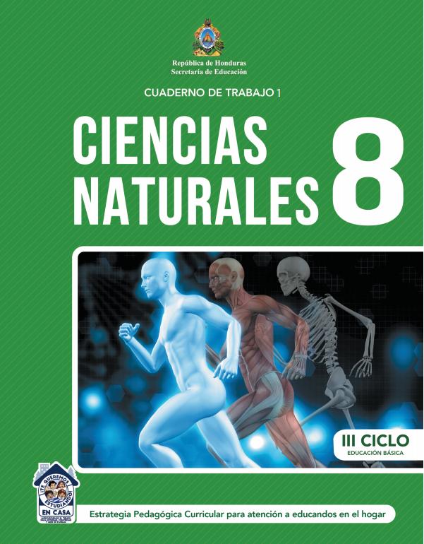 Cuaderno de Trabajo 1 Ciencias Naturales Octavo 8 Grado
