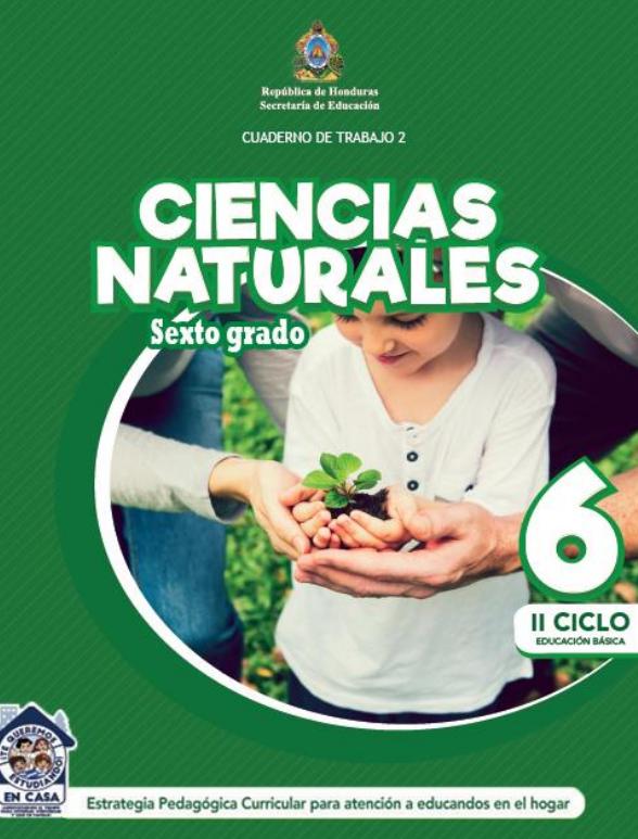 Cuaderno de Trabajo 2 Ciencias Naturales 6 Sexto Grado Honduras 2021