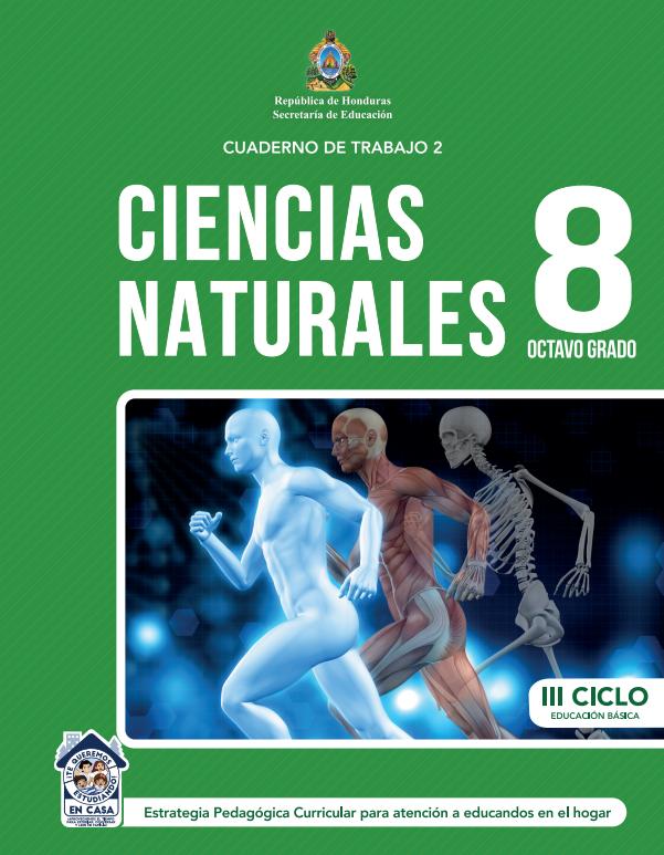 Cuaderno de Trabajo 2 Ciencias Naturales Octavo 8 Grado