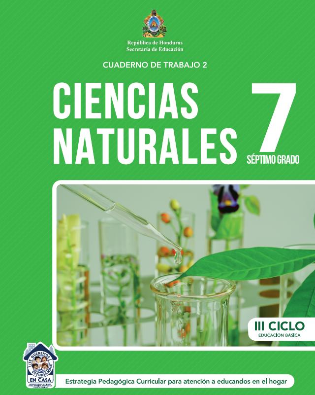 Cuaderno de Trabajo 2 de Ciencias Naturales 7 Septimo Grado Honduras 2021
