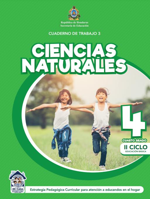 Cuaderno de Trabajo 3 Ciencias Naturales Cuarto 4 Grado Honduras