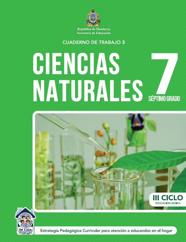 Cuaderno de Trabajo 3 de Ciencias Naturales 7 Septimo Grado Honduras 2021